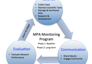 Monitoring-program-figure